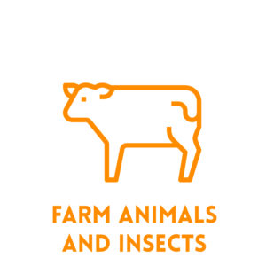 Farm Animals & Insects