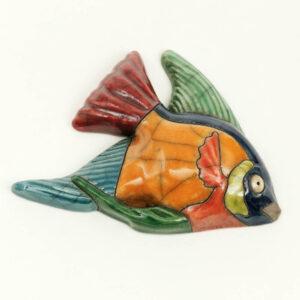 Angelfish Medium