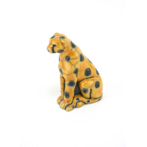 Mini Cheetah